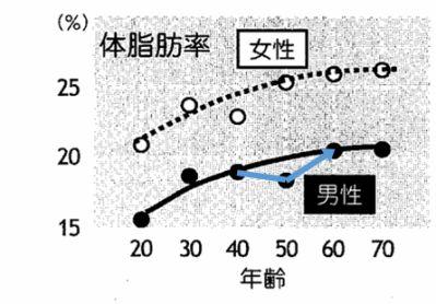 体脂肪率の年齢推移グラフ