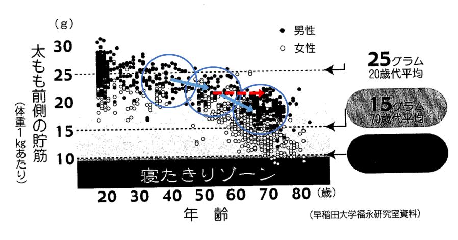 太もも前側の貯筋グラフ